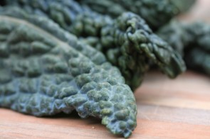 Want Prehistoric Cabbage? KALE YES You Do